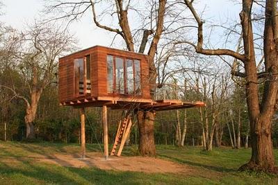 La casa del rbol paperblog for Casa en el arbol cuenca