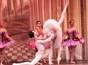 Classical Russian Ballet. bella durmiente.