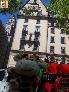 Día 5: Nueva York (museos y Central Park)