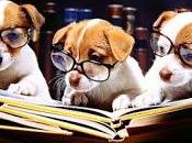 Clubes lectura málaga junio. nosotros lectores.