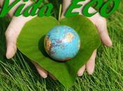 Vida Eco: Mundial Medio Ambiente