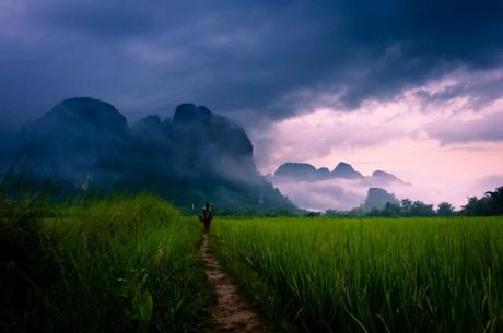 A woman walking on a path through rice paddies to mountains in mist  Vang Vieng, Laos, Asia