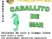 """""""Caballito Mar"""" Talleres Ocio Tiempo Libre para niños necesidades educativas especiales Ayuntamiento Torrevieja"""