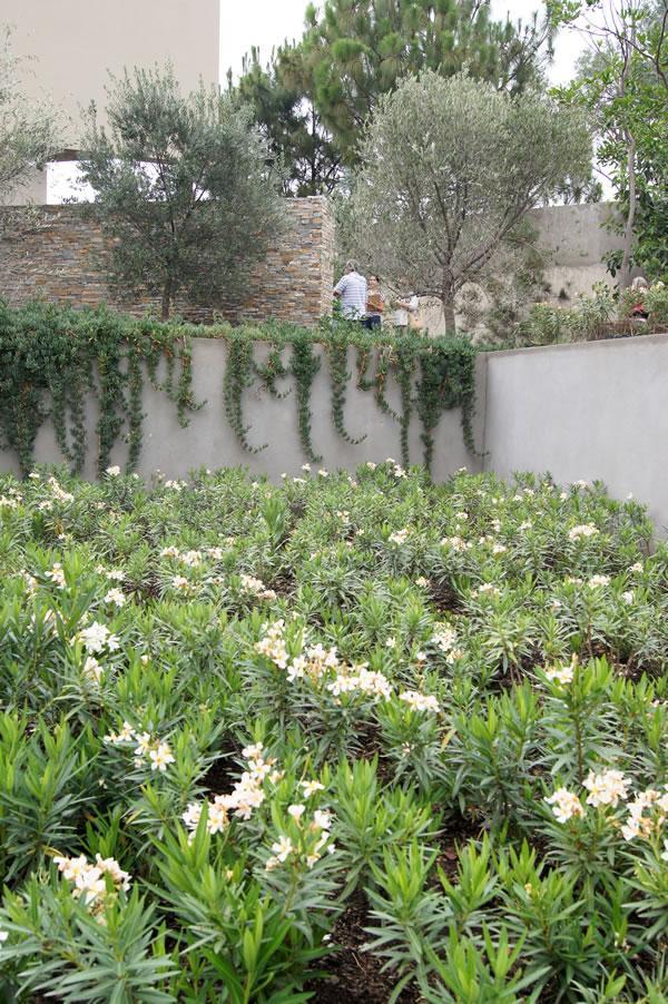 Tomando notas para crear un jard n hermoso e inspirador - Como hacer un jardin hermoso ...
