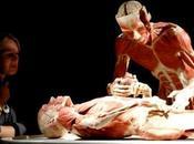 Técnica Thiel Soft-Fix: Sucesora Formaldehído Embalsamamiento Cuerpos