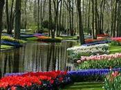 Jardines Botánicos: Atractivos Turísticos para sentidos!
