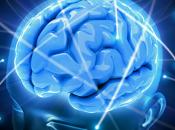 cerebro envejecimiento