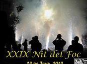 Diables Barceloneta XXIX (23.06.2013)