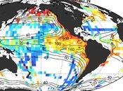 migración animales añade nueva profundidad cómo 'respira' Océano