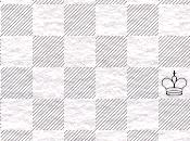 Problemas ajedrez: Ercole Rio, Siglo