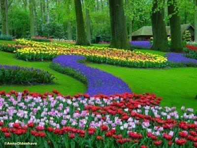 La poes a de la vida el jard n m gico de tus pensamientos for El jardin magico
