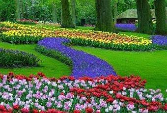El jard n m gico de tus pensamientos paperblog for El jardin magico