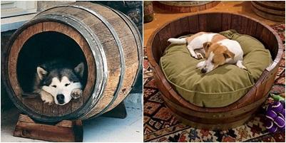 cama-y-caseta-para-mascotas-hecha-con-barriles-Evolución-Verde