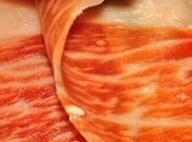 ¿Qué vemos imagen corte este jamón?