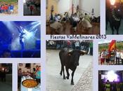Fotos fiestas 2013