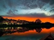 Tesoros Amazonas