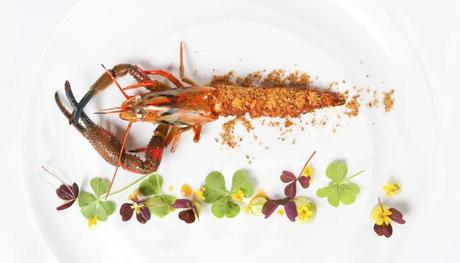 River-Shrimp