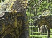 Descubierta nueva especie dinosaurio corneado
