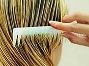 Protege cabello