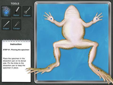 Disección virtual de una rana con iPad - Paperblog