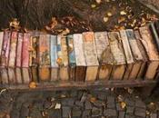 libros olvidados