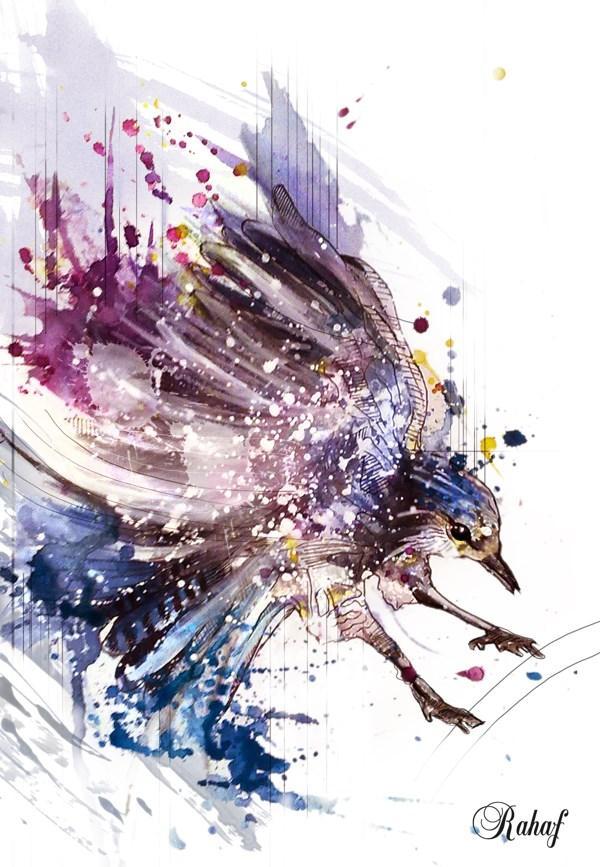 rahaf dk albab