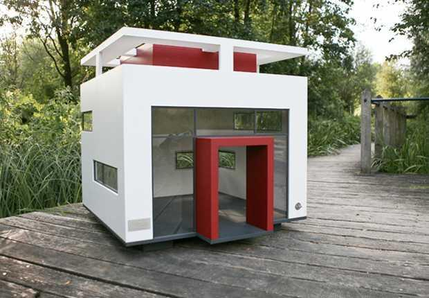 Casas Diferentes Para Perros Paperblog