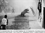 Certamen nacional: albert juan hace premio ladis fotografía taurina