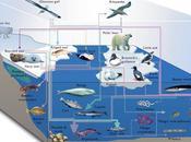 Introducción ecosistemas acuáticos