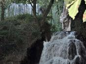 Fotos Monasterio Piedra (Nuévalos)