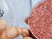 primera hamburguesa laboratorio, comida Londres
