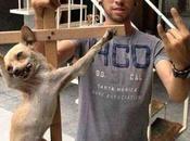 Indignante, crucifixión perro cuelga facebook