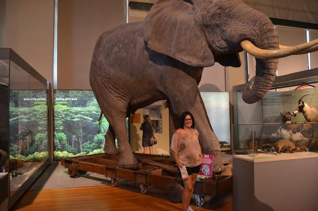museo ciencia naturales madrid:
