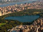 York City.
