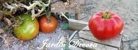 cultivar-tomates-trucos-de-hortelano