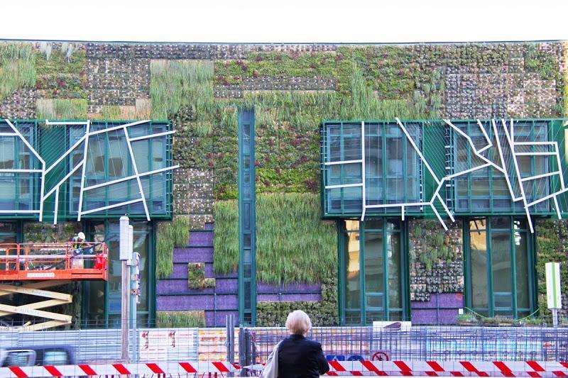 Pr ximo curso de jardines verticales en m xico diciembre for Jardines verticales quito