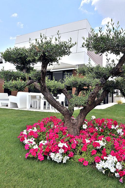 Los jardines de finca las mar as paperblog for Jardines terapeuticos en hospitales