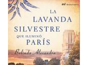 Belinda Alexandra: Lavanda Silvestre Iluminó París