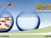Programa Mentoring Para Coaches Certificados