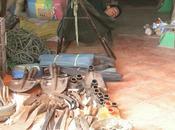 Comprando como local mercado Tonle