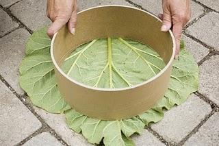 C mo se hace losas de cemento para el jard n paperblog - Losas para jardin ...