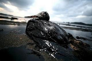 Catástrofe en E.E.U.U. - Marea NEGRA por la explosión de una plataforma petrolífera