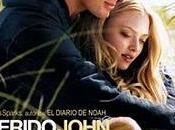 """Crítica """"Querido John"""""""