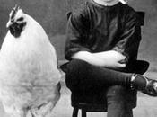 niño polla, viceversa (II)