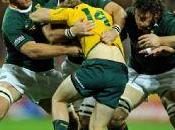 nations 2010: australia remata springboks
