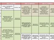 cronograma TALLER LINEATRES CONEA 2010-UCCI