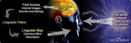 Cerebro PNL