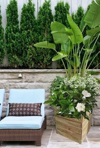 Razones para cultivar en jardineras de madera paperblog - Jardineras con palets de madera ...