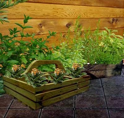 elegir jardineras de madera para cultivar