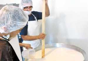 En Chihuahua hacen el 'milagro de la multiplicación del queso'